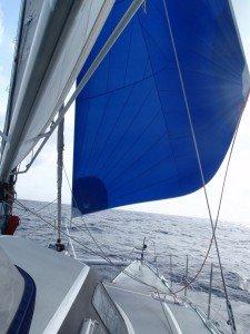 A la recherche du vent annoncé par la météo . . .!!! PC070019-225x300